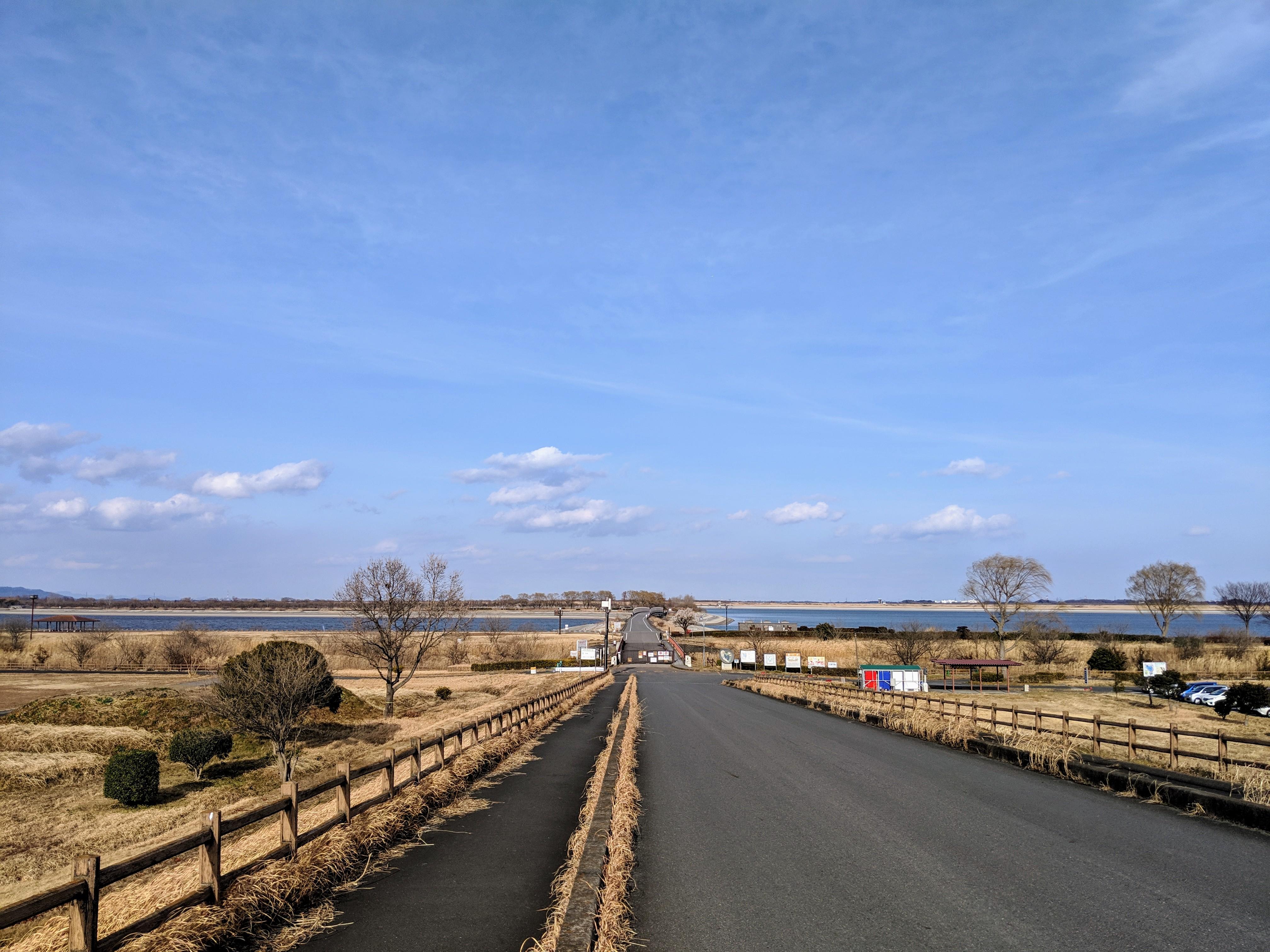 【東京~古河】暇だったので渡良瀬遊水池まで旅をしてみた【自転車】